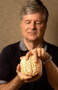 Neurologista afirma ter criado primeira religião com base científica, com ausência de Deus