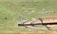 """Em protestos do """"Abril Vermelho"""", MST estaria planejando invadir fazendas da Igreja Mundial do Poder de Deus"""