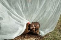 Malária na África: igrejas e a organização cristã Visão Mundial unem-se para combater a doença que mata milhares de crianças