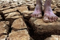Igreja Universal promove abaixo-assinado para cobrar do governo federal ações contra a seca