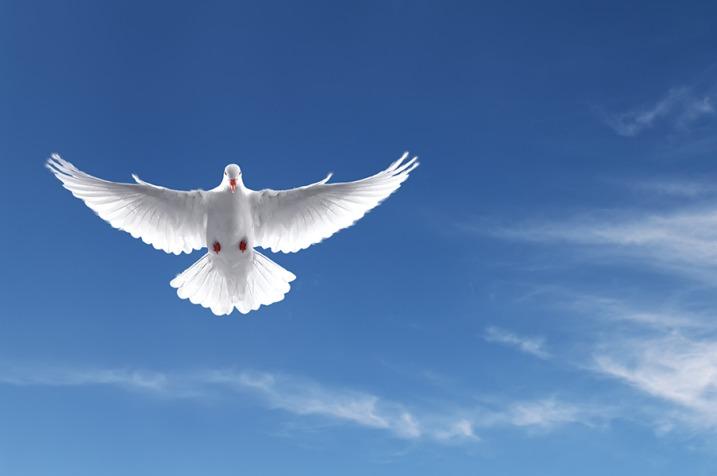 Silas Malafaia Batismo Com O Espírito Santo Não é Para Qualquer Um