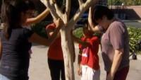 """Fiéis se reúnem para fazer preces em frente a árvore que """"chora lágrimas de Deus"""""""