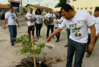 """Igrejas apoiam o projeto """"Verdejando"""", e plantam árvores para aumentar as áreas verdes em São Paulo"""