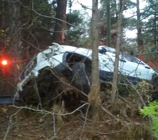 Carro ficou preso entre pinheiros após sair da pista